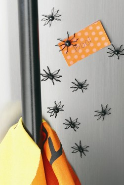 tag Magnetic Spider Scatters