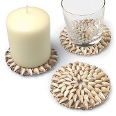 Ivory Shell Coaster
