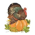 Mary Lake-Thompson Turkey On Pumpkin Linen Guest Towel Set