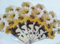 Daisy Folding Fan
