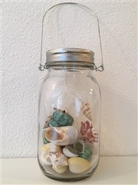 Lighted Seashell Lantern