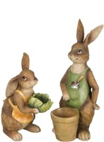 Garden Rabbit Set